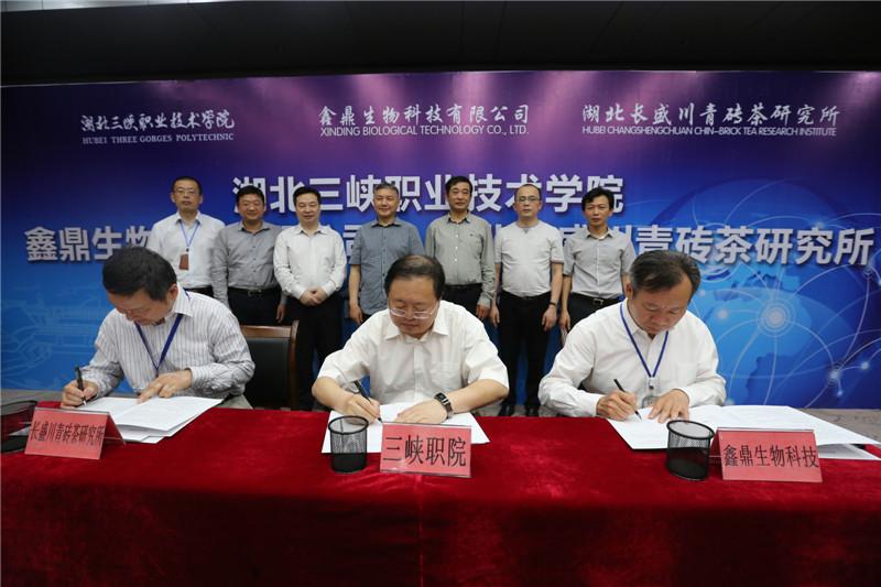 三峡职院与万达手机版测速、湖北长盛川青砖茶研究所签订战略合作协议