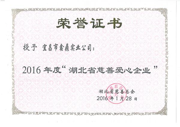 """2016年荣获""""湖北省慈善爱心企业""""称号"""