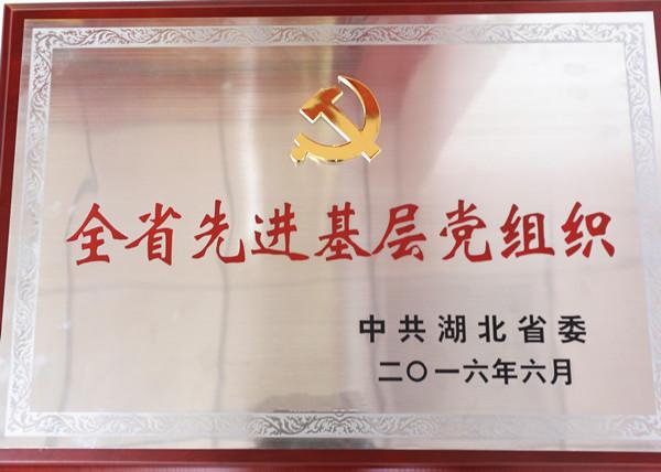 """2016年荣获湖北省""""全省先进基层党组织""""称号"""