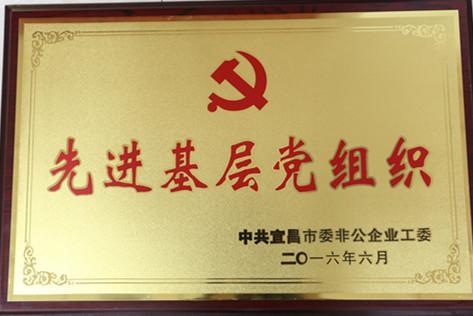 """2016年荣获宜昌市""""先进基层党组织""""称号"""