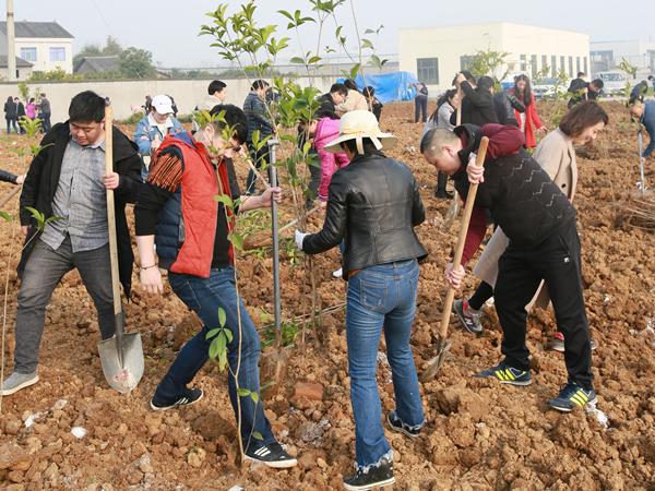 """2019年3月10日,以""""发展绿色产业 建设绿色家园 共享绿色成果""""为主题的植树活动在长江南岸,集团旗下宜昌力能液化燃气有限公司厂区举行。集团各单位(部门)员工100余人栽种下一颗颗树苗,为生态厂区再添新绿,推动长江两岸造林绿化,以实际行动践行绿色发展理念。"""