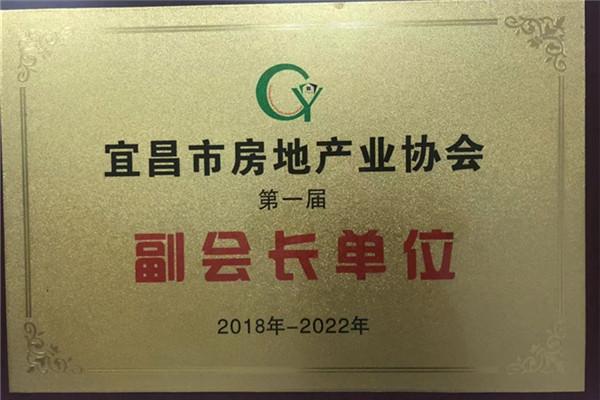 宜昌市房地产协会副会长单位