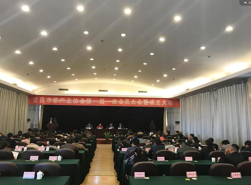 喜讯: 宜昌市茶产业协会成立,何建刚当选副会长